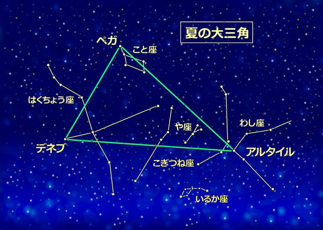 お庭で子どもと楽しむ星空観察。夏休みに見たい星座は?
