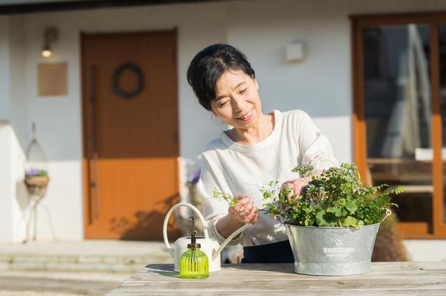 我が家だけの、お庭のお花見、この春から楽しみませんか?