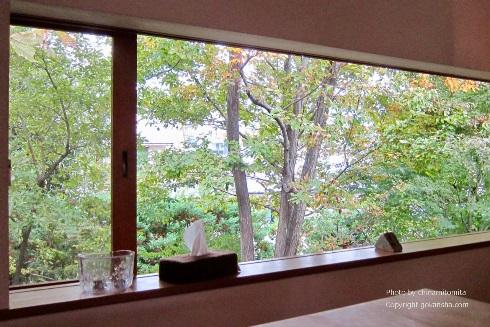 【エクステリア空間の専門家】カーテンを開けても外の視線から目隠ししてプライバシーを守る方法