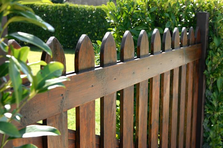 我が家のプライバシーも守りたい、塀やフェンス、生垣などの特徴と選び方とは?