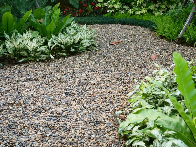 庭の雑草対策。解決するにはどんな方法がある?