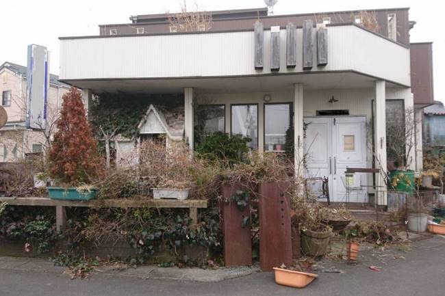 家の外周を愛犬と過ごすドッグランに。お手入れ楽でダイナミックなナチュラルガーデン|エクステリアリフォーム事例No.4