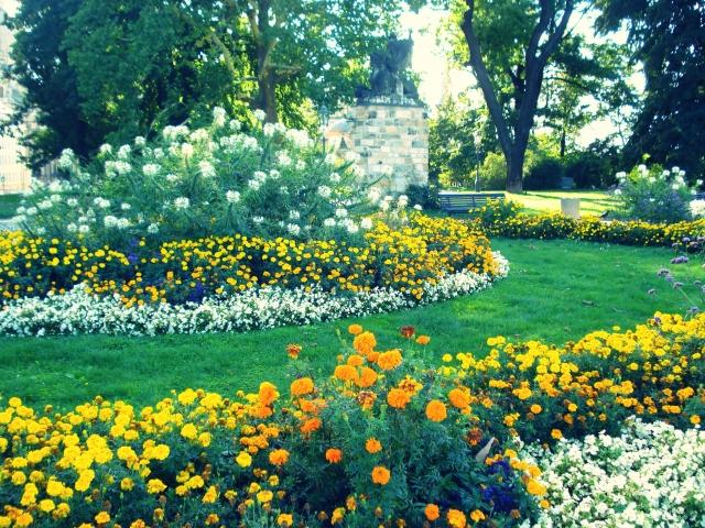 【建築設計士が考える】春のガーデニング、植物を選ぶ4つのステップ