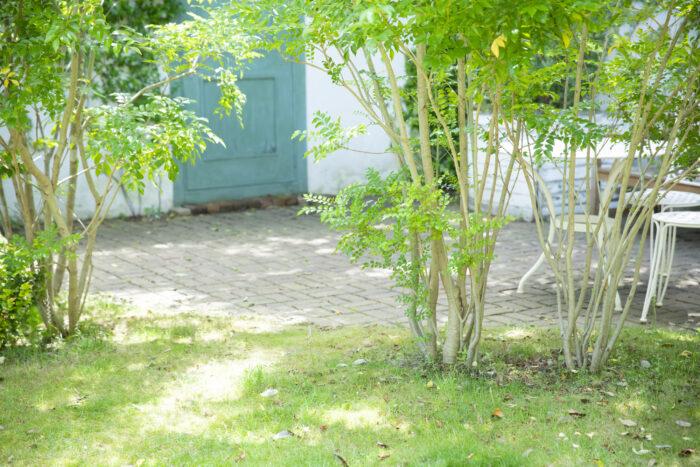 バスコートでリゾート気分!浴室から庭やベランダに繋げる仕掛けで非日常を楽しむ
