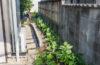 狭い庭を家族みんなが楽しめるスペースにするには?