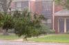 玄関や駐車場、外壁のゲリラ豪雨対策は万全ですか?